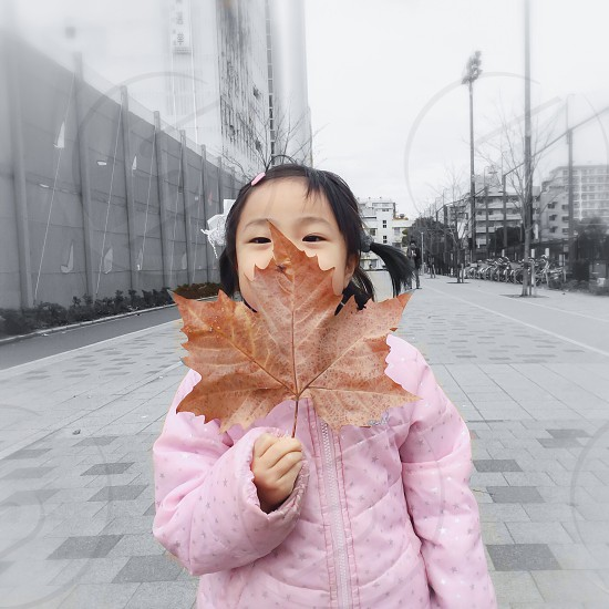 girl in pink puff jacket holding brown maple leaf photo