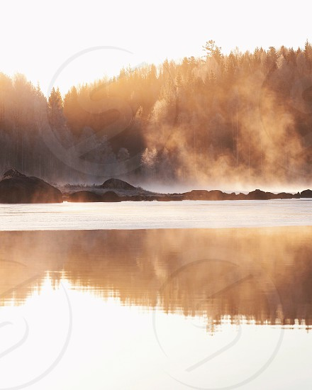 Tree lightrays light natural light nature autumn fall oak rays fog mist sunrise reflection steam winter frozen frost photo