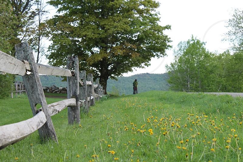 pasture landscape photo