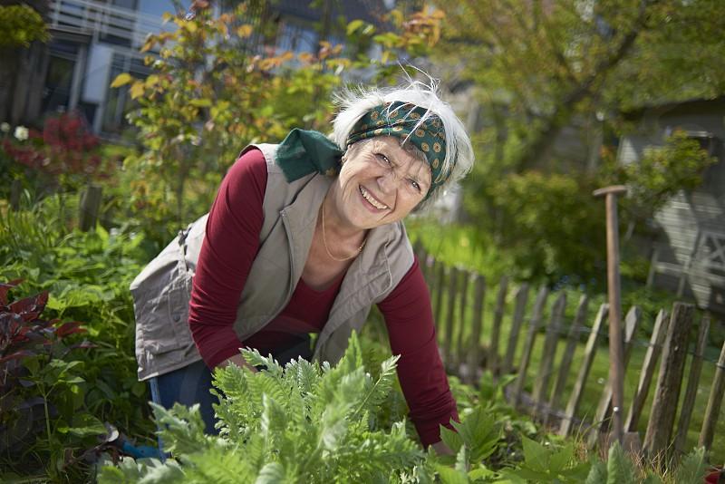 Healthy happy elderly woman hard at work gardening in her back yard in spring sunshine photo