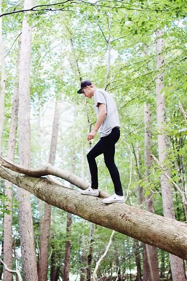 man walking across tree photo photo