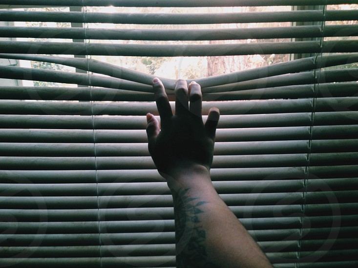 right human hand holding white window blinds photo