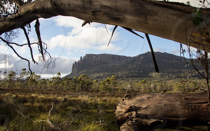 The Overland Track Tasmania Australia www.msturmphoto.com photo