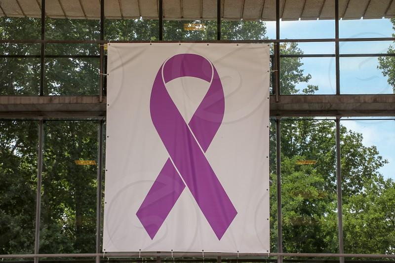 purple ribbon photo