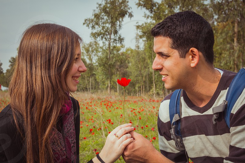Man giving a woman single red anemone flower in anemones field. photo