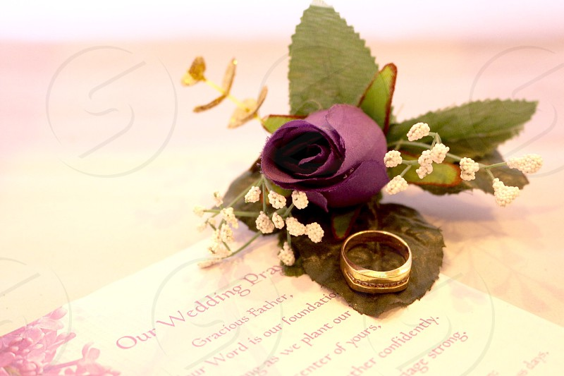 Purple rose and wedding band  photo