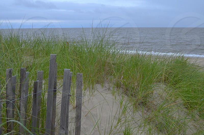 Beach sand grass fence photo