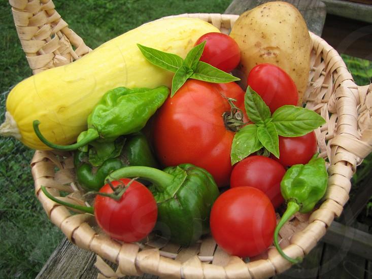 Basket of garden produce. photo