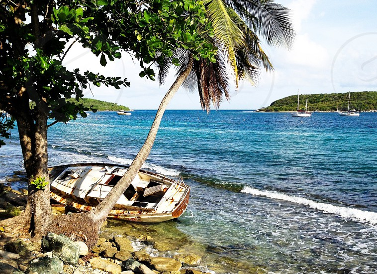 Vieques Puerto Rico. The island beaches were littered with abandoned boats amongst the sea-worthy sails. We swam out to the island in the distance later in the day and saw a giant manta ray. A paradise. photo
