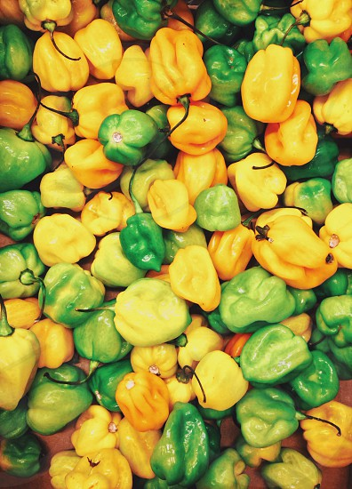 yellow and green peppers photo