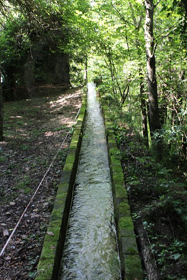 panoramic view of the grey concrete water way in the forest photo