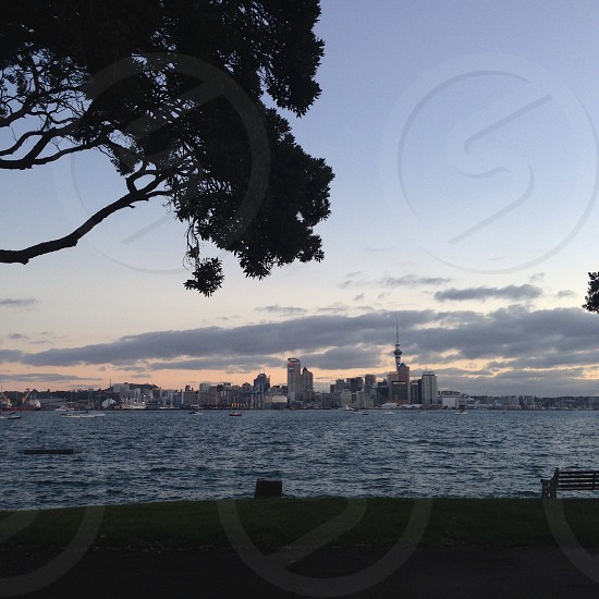 View of Auckland City from Devonport photo