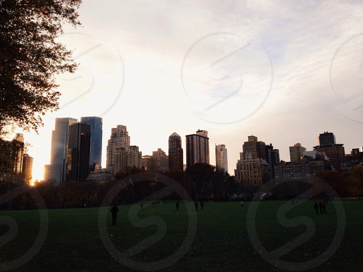 panoramic view of the park full of people photo