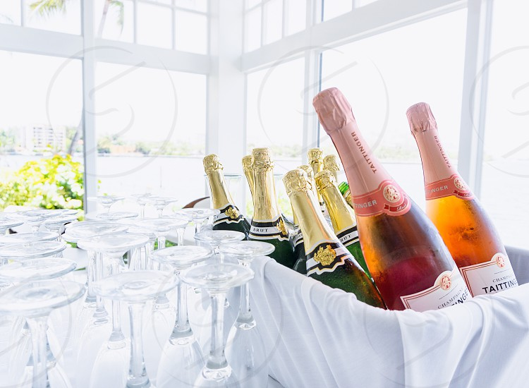 Drinks champagne  photo