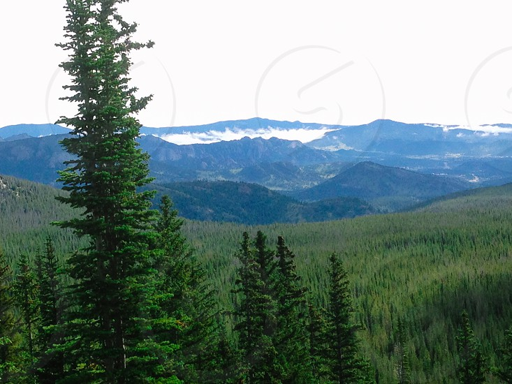 Colorado Rocky Mountains Rocky Mountain National Park mountains hills forest pines pine trees trees sky clouds nature wilderness photo