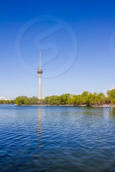 white cn tower photo