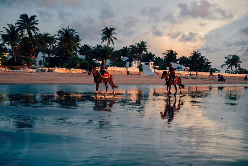 beach sand water reflection sunset boys children horses clouds palm trees boys asia asian kids photo