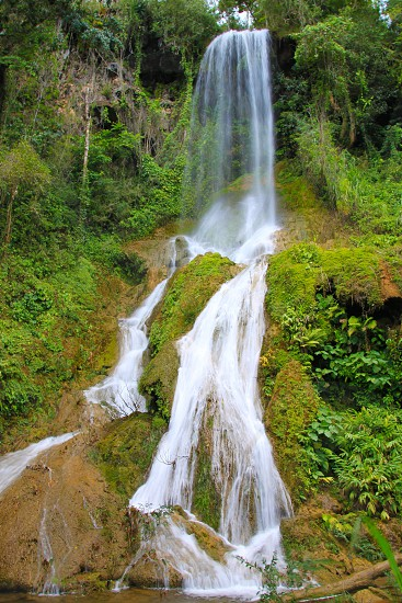 Rainforest waterfall photo