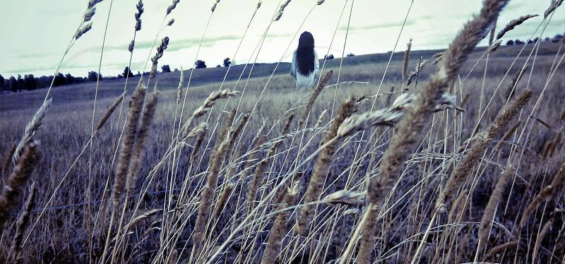 Alone girl among fields. photo