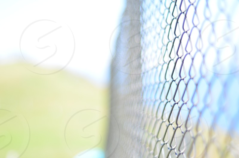 Fence in nature photo