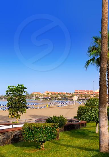 Los Cristianos beach in Arona Tenerife south at Canary Islands photo