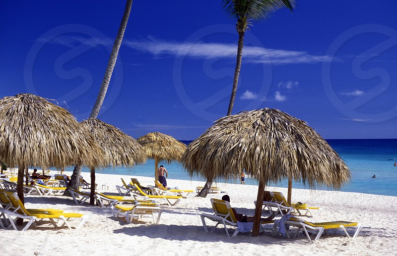 a Beach at the Village of  Punta Cana in the Dominican Republic in the Caribbean Sea in Latin America. photo