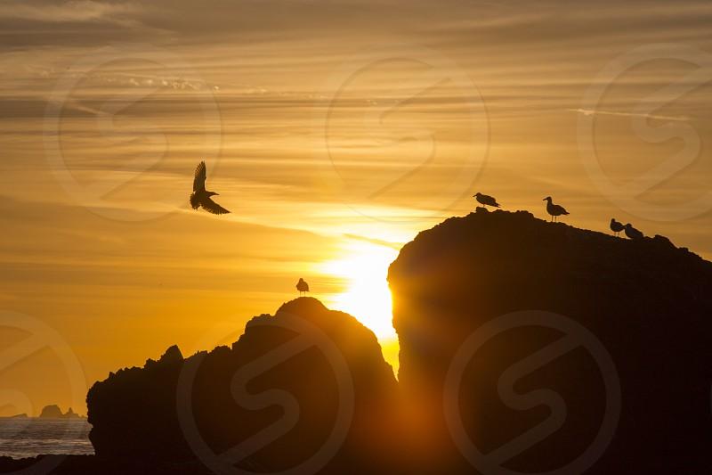 Sunset at Marshall Beach -#3 photo