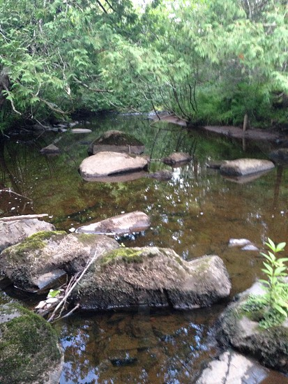 Calm creek photo