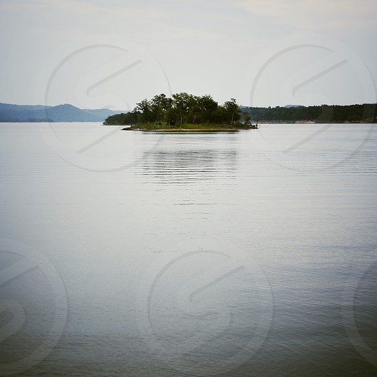 trees on small island in lake photo