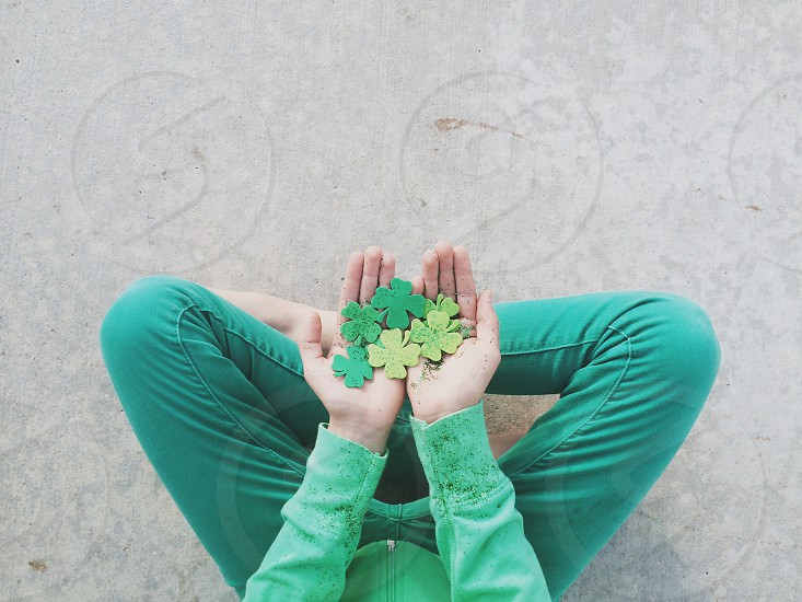 green and yellow clover leaf photo