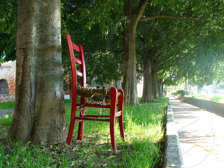brown wooden side chair beside tree photo