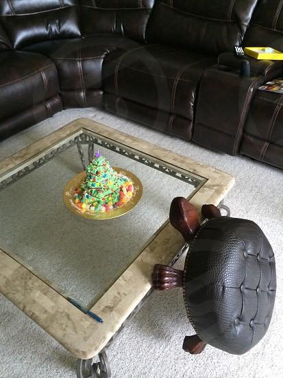 Hungry turtle photo