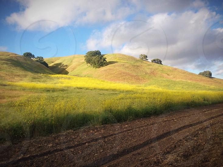 landscape photograph photo