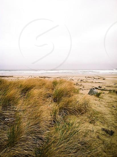 Sandy waves photo