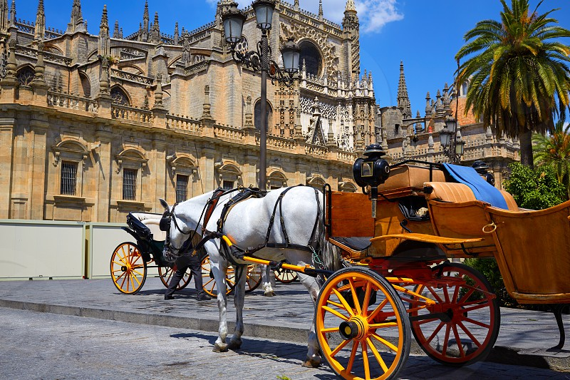 Seville horse carriages in Cathedral of Sevilla Andalusia Spain photo