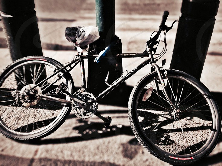 another bike photo