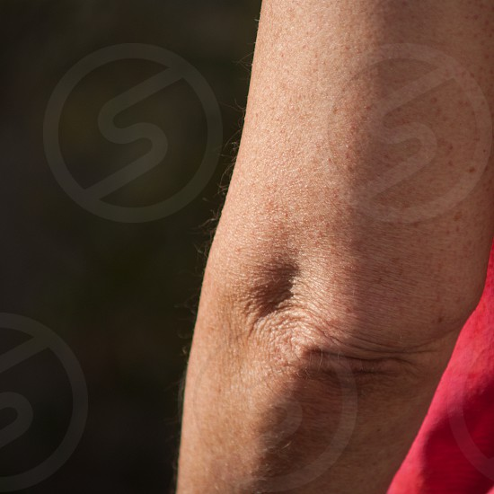 Female arm showing elbow... photo