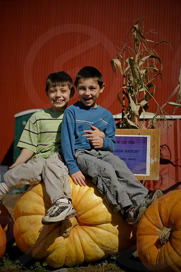 two boys sitting on cabbage vegetable chair photo