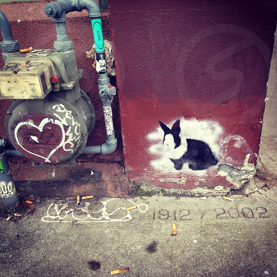 red wall paint with white and black bunny graffiti photo