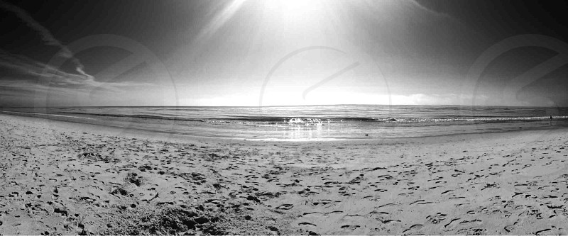 Butterfly beach  photo