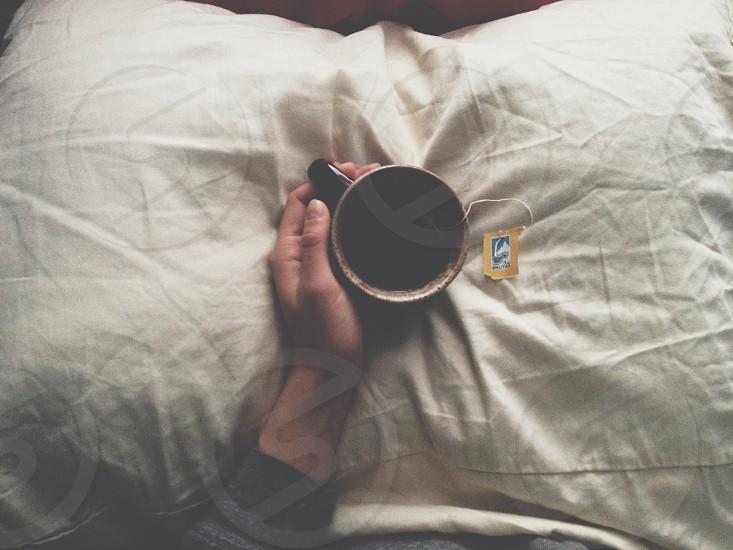 morning tea // lemongrass  photo