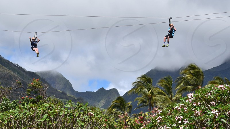 Zip lining in Maui photo