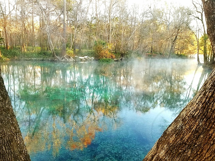ginnie springs Florida sunrise photo