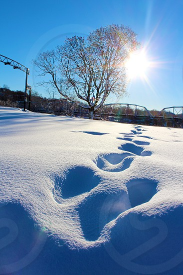 Foot prints in the snow. photo