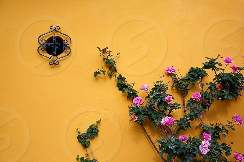 Seville Macarena barrio facades in Sevilla Spain photo