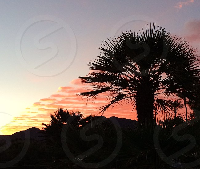Desert sunrise... photo