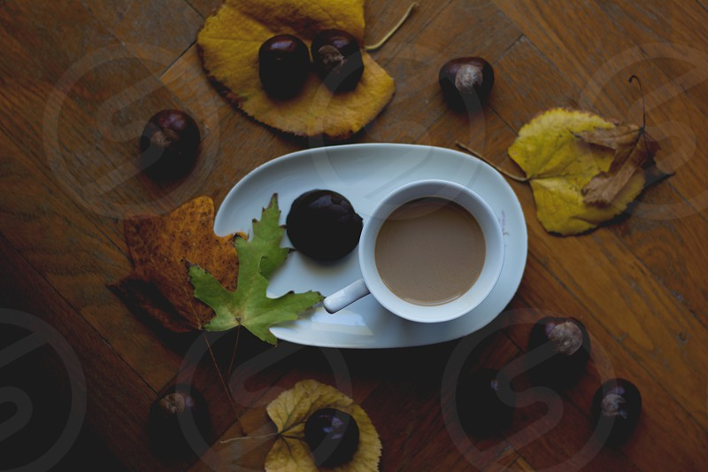 Fall beverages cup of coffee for autumn cold mornings with chocolate cookie aside and colorful autumn leaves and chestnuts around photo