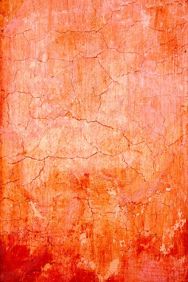 grunge wall cracked texture in orange red colors photo