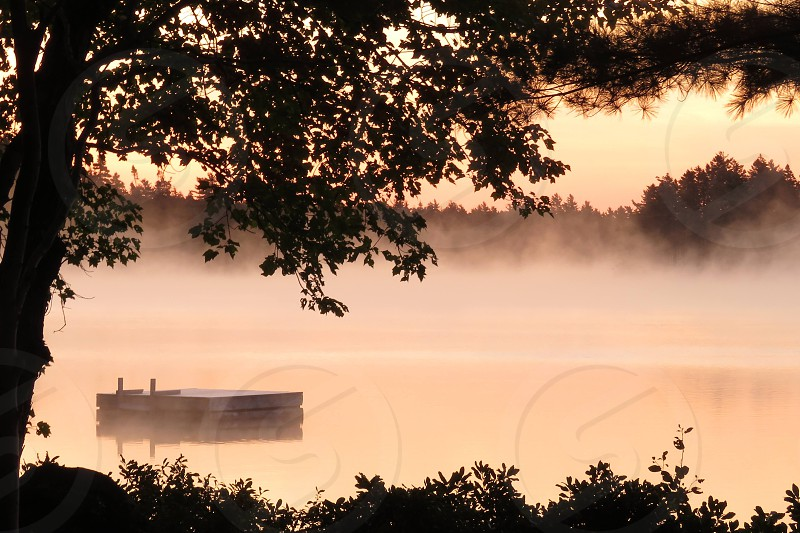 Serenity at Dawn. Looking through the trees at a misty sunrise in peach embrace the dock at the lake.   photo