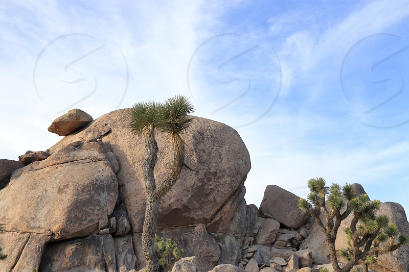 Balancing Rock photo